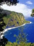 荒野求生-20131208-夏威夷野猪岛上的斯巴达勇士