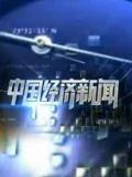 中国经济新闻2013