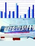 财经壹周刊2013
